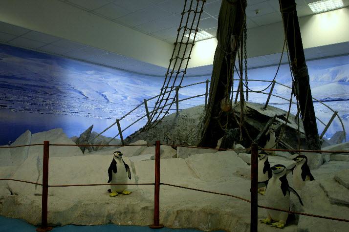 Museo dell'Antartide